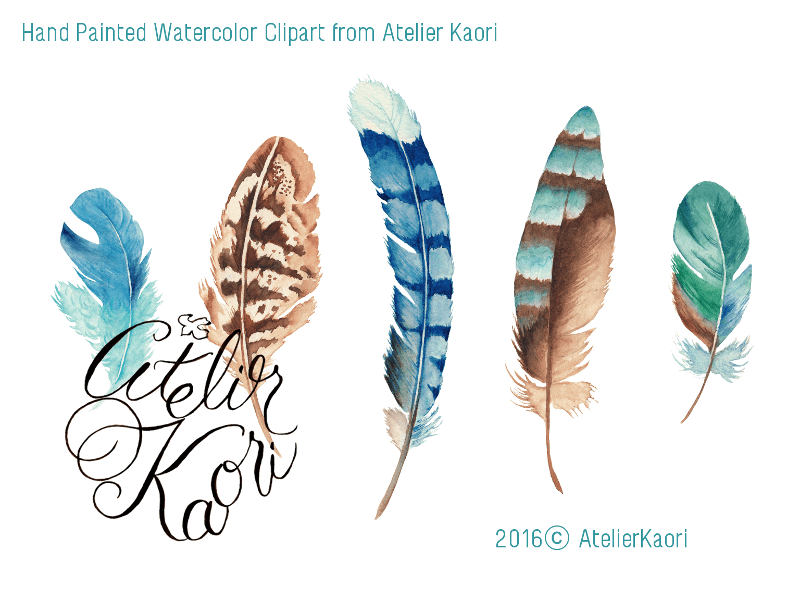 feather skull clipart