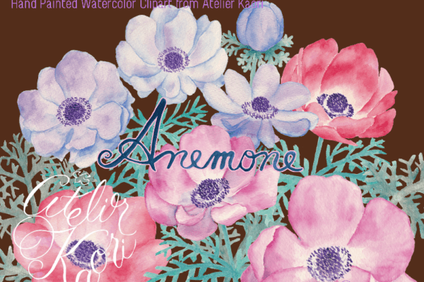 anemone clipart