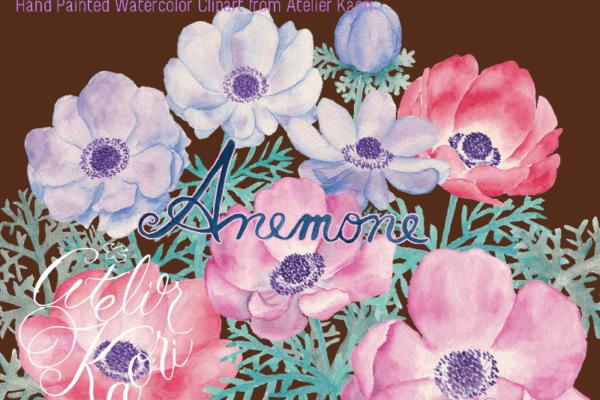 anemone clipart