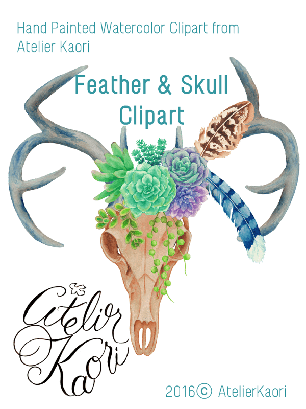 feather skall clipart