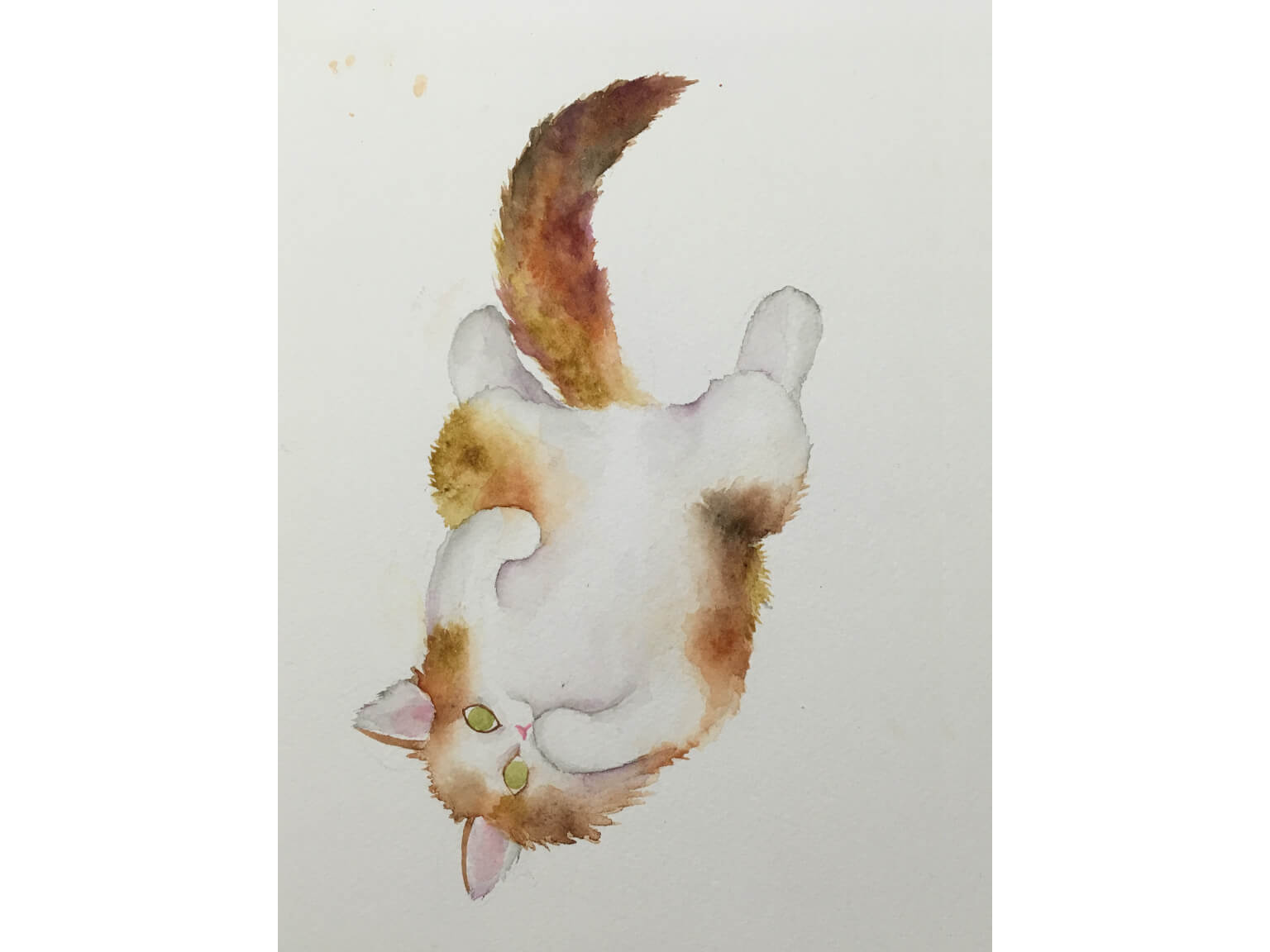 watercolor cat clipart