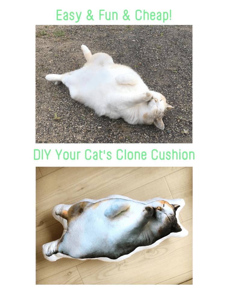 DIY Cat's Clone Cushion