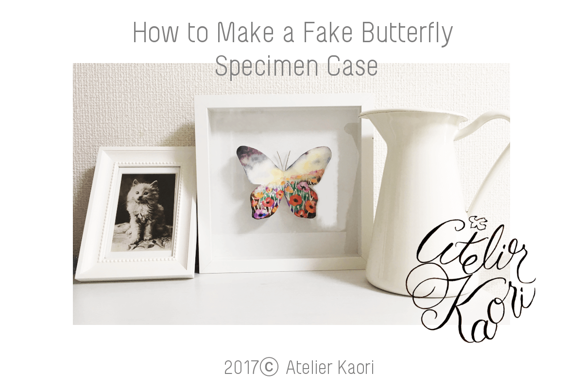 diy specimen case with butterfly clipart